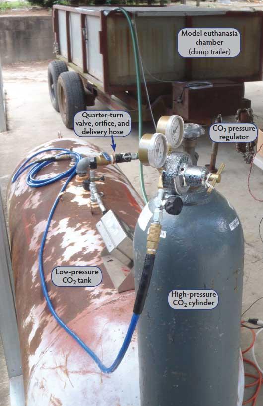 Rice M Baird C Stikeleather L Et Al Carbon Dioxide